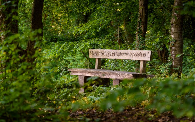 Wooden Bench, Ingendael (Valkenburg)