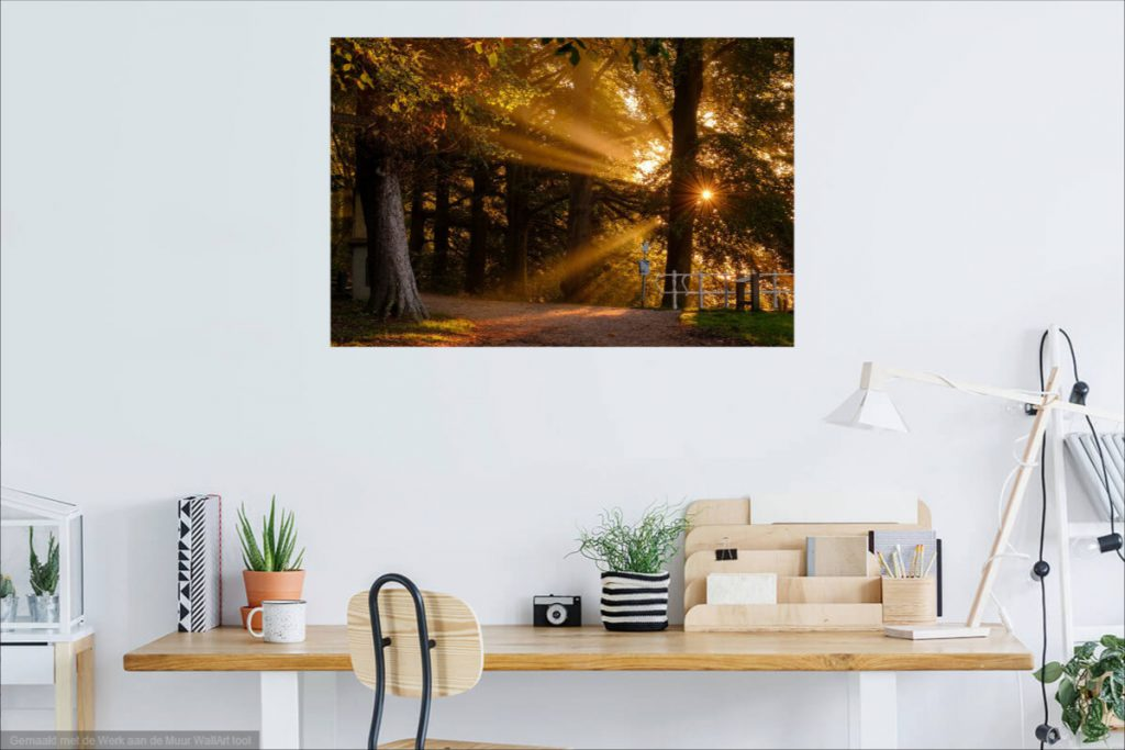 Buy a photo print at Werk Aan de Muur